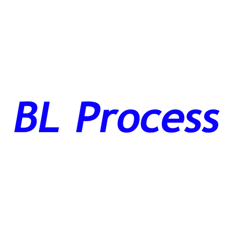 BL Process Co. Ltd