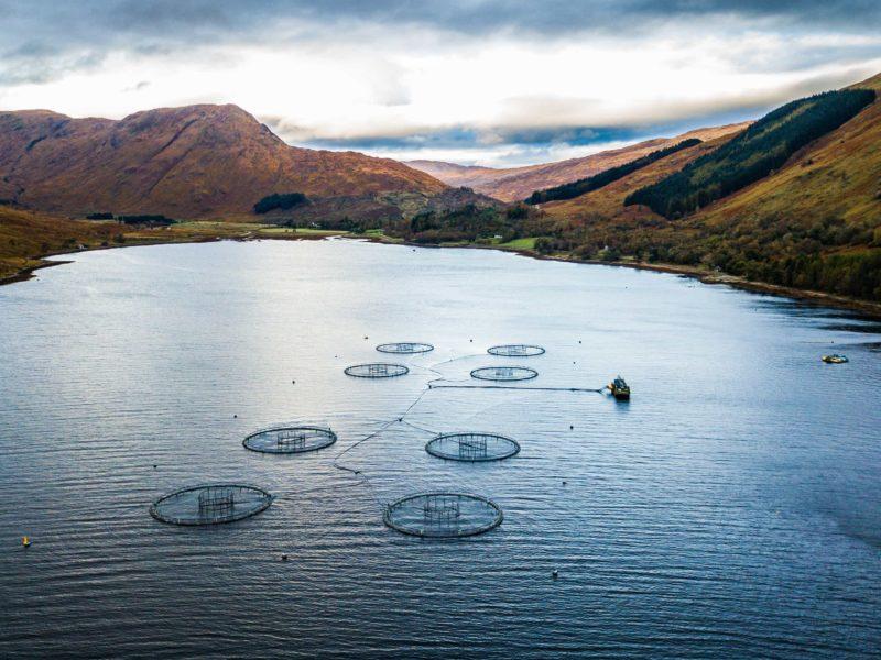 Marine Science_Aquaculture